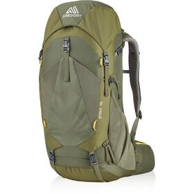 Gregory Stout 45 Backpack Men fennel green